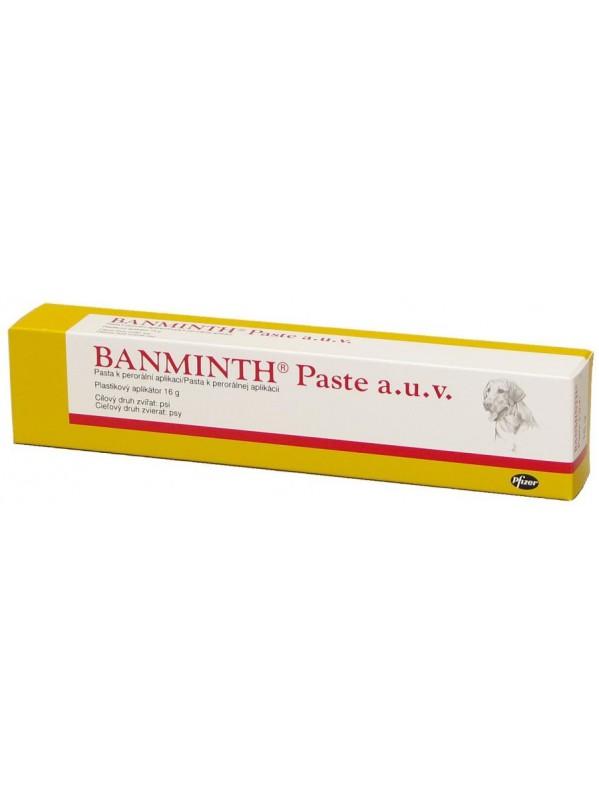 17807-banminth-paste.jpg
