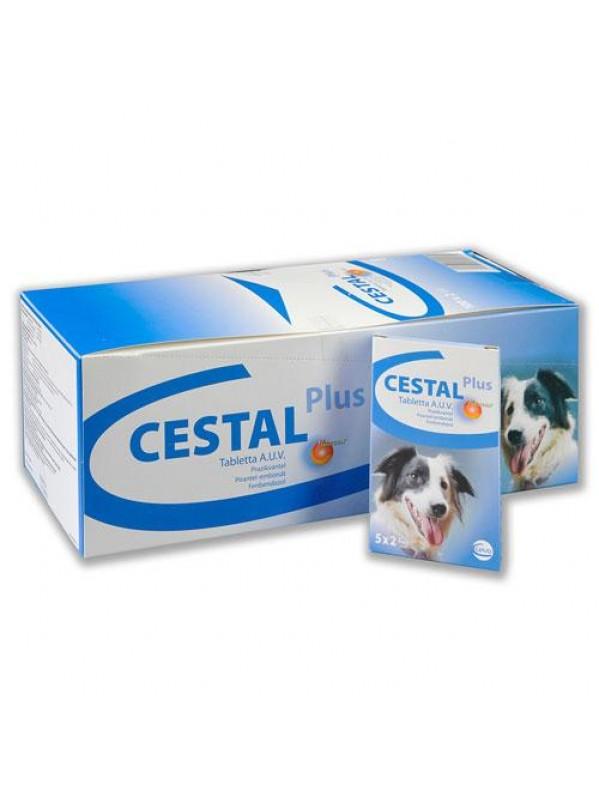 cestal-dog-940x565-1.jpg